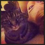 Also Also Also Meow.